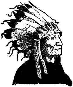 Chief in war bonnet